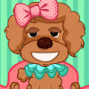 Toy Poodle Makeover